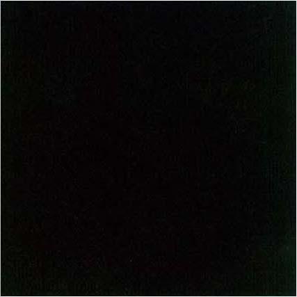 lt negro