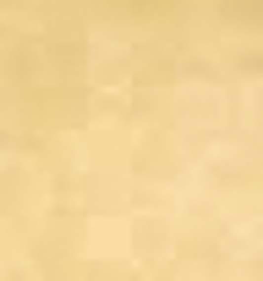 furka 23 beig